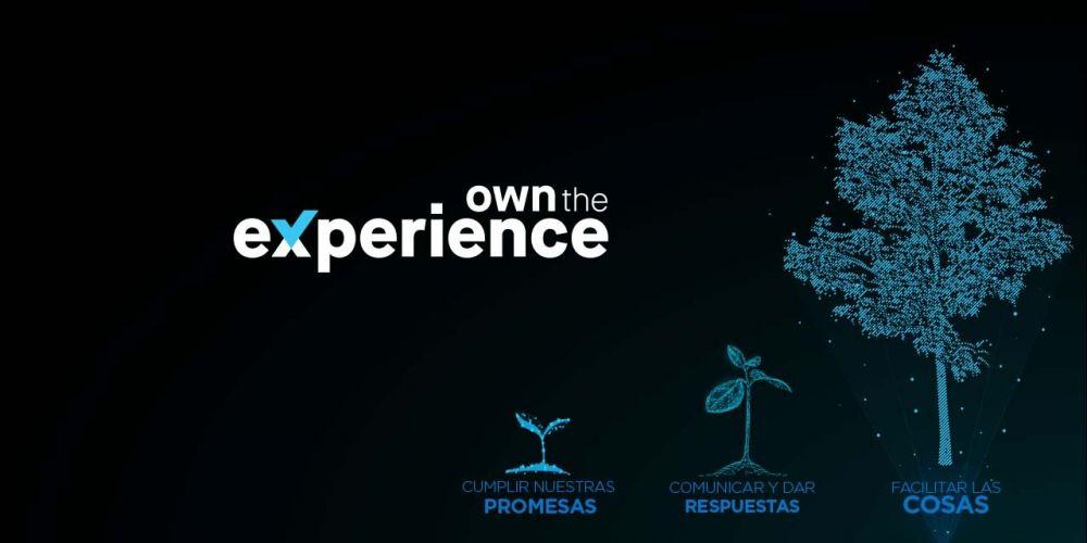 cx-own-experience-es